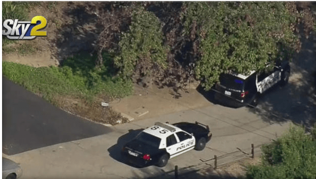 Police vehicles outside home where Nadine Hernandez was found dead .png