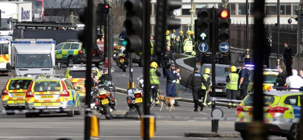 A police sniffer dog works with members of the emergency services on Westminster Bridge, alonside the Houses of Parliament in central London after the terror attack, Wednesday.jpg