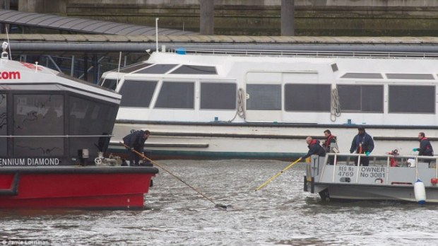 woman was either knocked, jumped or fell in the River Thames during the attack but was rescued by boat crews