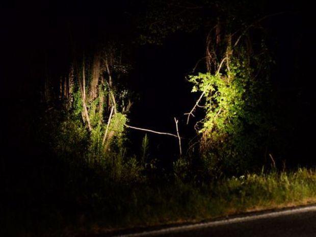 Highway 20 where the truck was hidden.jpg