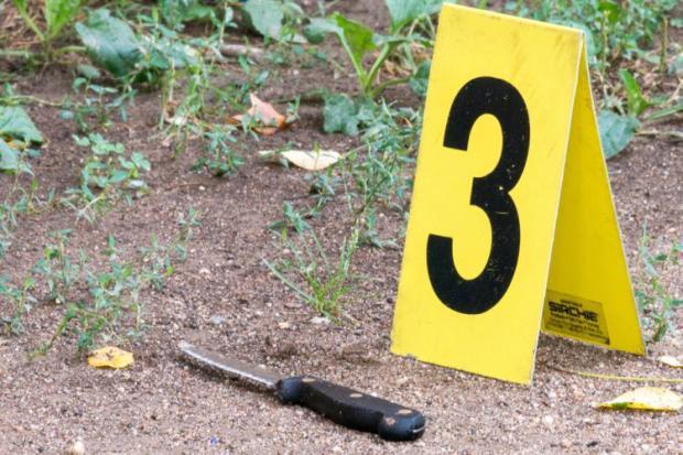 The knife Octavia Elliott used in stabbing her boyfriend Ramel Patterson was found at the scene
