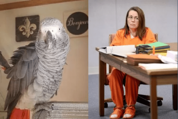 Bud the parrot and Glenna Duram.png