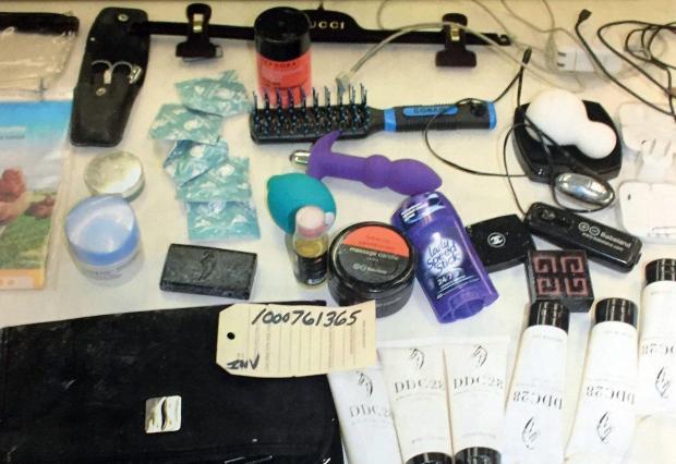 Items recovered from Svetlana Travis Zakharova at the Plaza Hotel in February 2016 .jpg