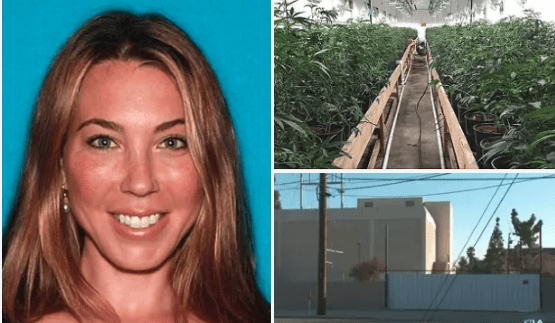 Cops bust drugs 'Queenpin'  behind multi-million dollar weed 'fortress'; High roller mom, Stephanie Smith, 43, was netting a 'fortune and using it to fund lavish lifestyle' in upscale California neighborhood - Cops