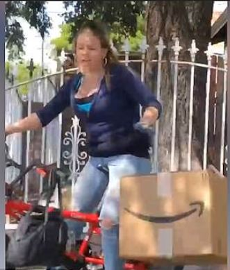 Man dogs porch raider and forces her to drop Amazon package she brazenly stole off his neighbor's porch