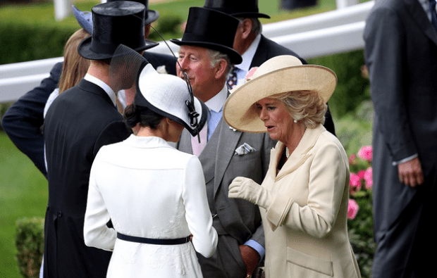 Prince Charles and Camilla chat with Harry and Meghan .png