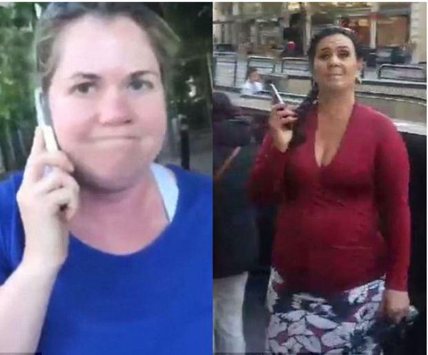 Permit Patty (left), Permit Betty (right)