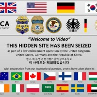 23 abused kids rescued as feds bust biggest international child porn ring, more than 300 arrested including South Korean, Jong Woon Son, 23, 'mastermind' of Darknet site with sick videos of children and infants that were sold for bitcoin