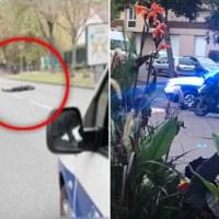 French anti-terror police fatally shoot killer who screamed 'Allahu Akbar', as  he decapitated teacher near Paris school after talk on Prophet Muhammad cartoons