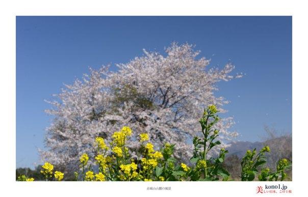 赤城山山麓の風景03