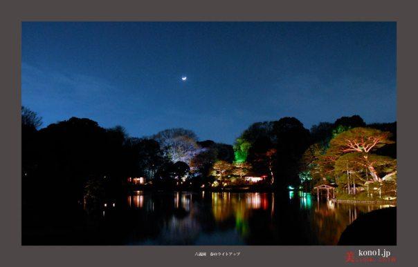 六義園の夜桜02
