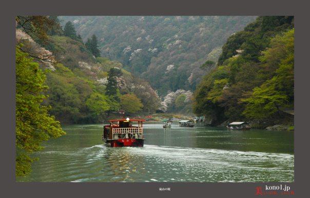 嵐山の桜03
