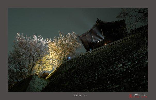 清水寺ライトアップ03