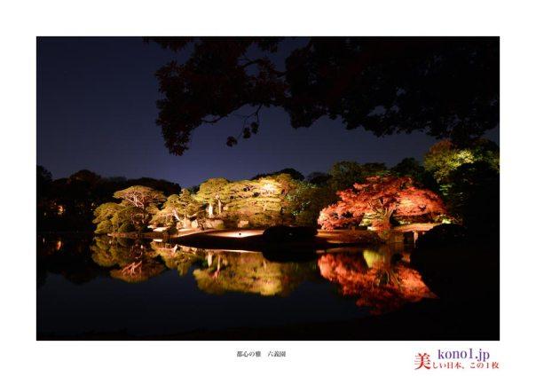 131130_六義園紅葉ライトアップ02