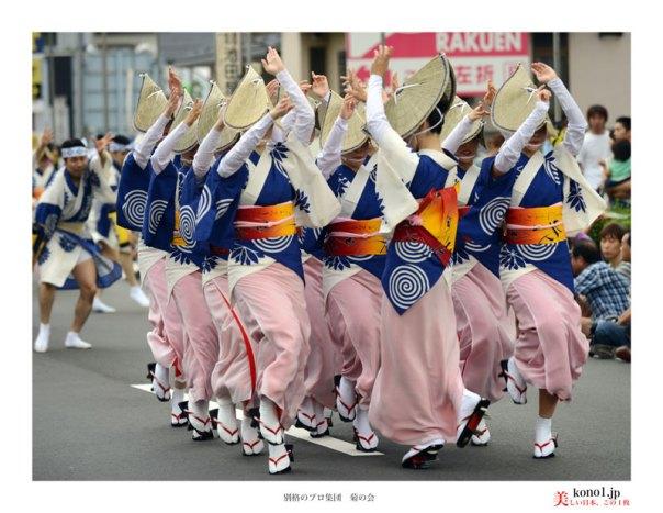 南越谷阿波踊り 菊の会 町流し