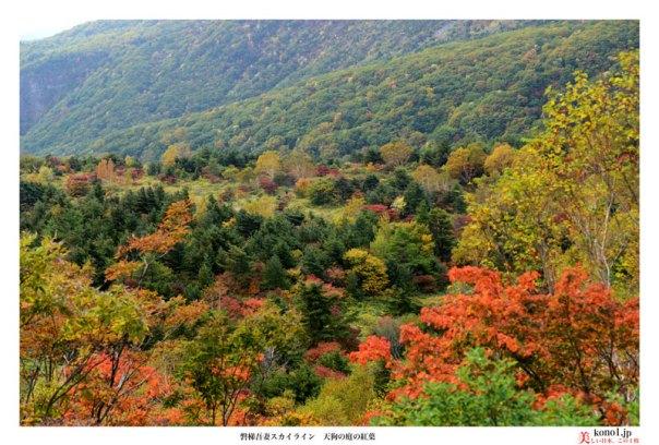 ブログ 磐梯吾妻スカイライン 天狗の庭 紅葉