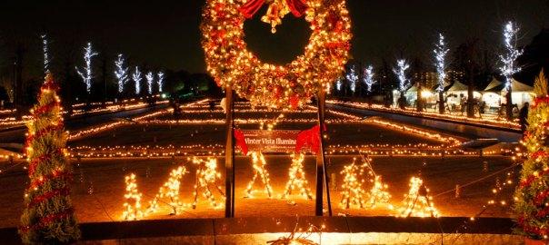 東京 立川市 夜景 昭和記念公園 シャンパンゴールド イルミネーション 迷路 汽車 国立公園