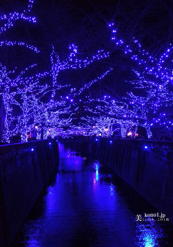 東京 夜景 クリスマス イルミネーション 中目黒 目黒川  LED  青の洞窟