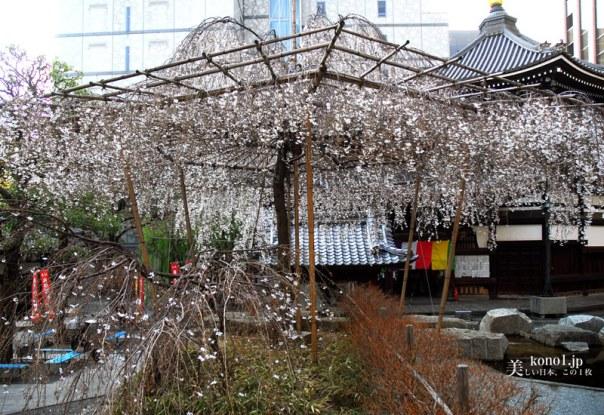 京都 頂法寺六角堂 聖徳太子 小野妹子 へそ石 最古の寺