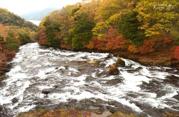 栃木県 日光 竜頭の滝 紅葉