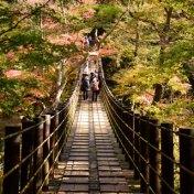 茨城県 花貫渓谷の紅葉 吊橋