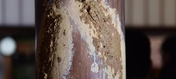 お水送り 山八神事 2016 福井県小浜市 神宮寺 奈良東大寺二月堂お水取り