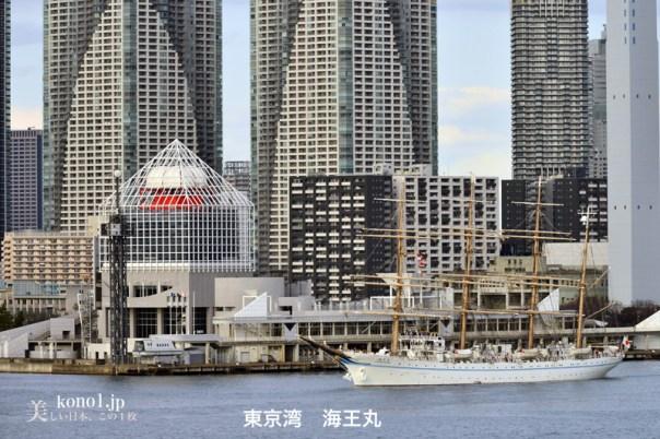 海王丸 帆船 東京湾