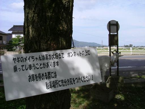 999_FUJI-DSCF3350_DSCF3350.JPG