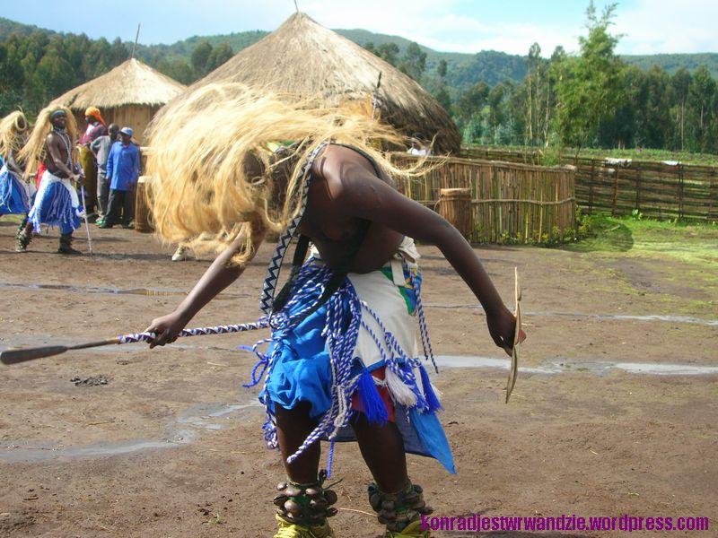 Dzikie tańce