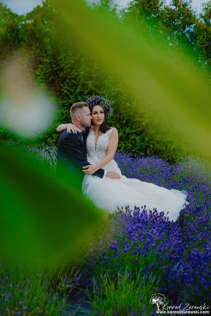 Piękne ujęcia w polu lawendy podczas ślubnej sesji - fotografia ślubna Zgorzelec | Konrad Żurawski