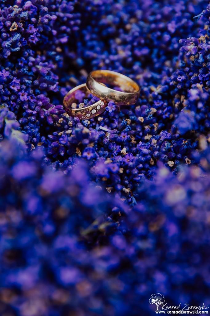 Obrączki malowniczy wyglądają na lawendowej łące - fotografia ślubna Zgorzelec | Konrad Żurawski