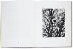 Michael Schmidt: Natur