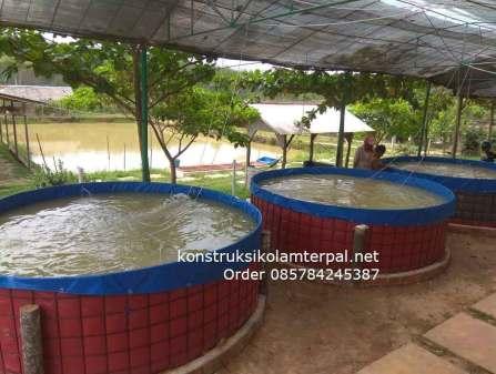 LARIS! Ini Kolam Terpal Fullset yang di Jual Jayapura