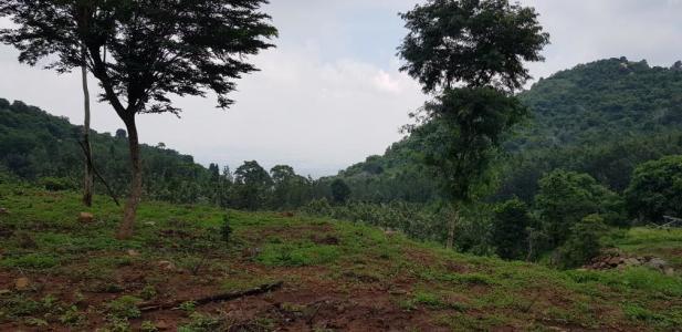Jual Beli Tanah Tidak Sah, Tapi Sudah Terbit Sertifikat, Apakah Sertifikatnya Sah?
