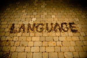 language-big