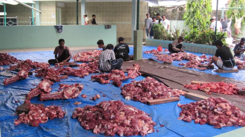 memberi daging qurban kepada non muslim