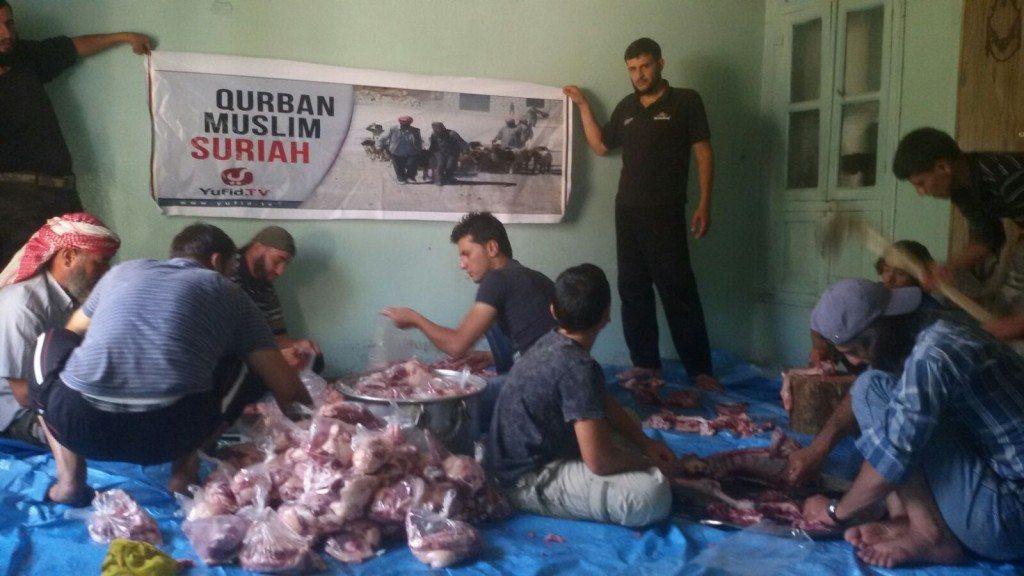 Qurban Suriah 8
