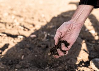 hukum makelar tanah