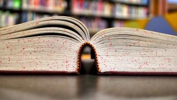Lettere ordblind kvinde søger hjælp til at forstå tekster
