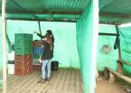 Centro de acopio temporal (Ventaquemada, Boyaca)