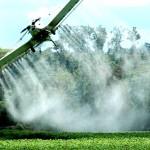 """""""Hoy se aplica cuatro veces más fungicida que en 2010, tres veces más herbicida y hasta nueve veces más insecticida"""""""