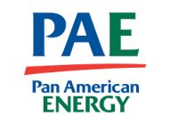 panamericaenergy-bridas
