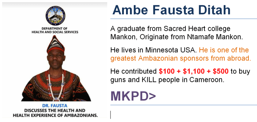 Ambe Fausta Ditah - Face of Wickedness - Sponsoring Terrorism in Cameroon