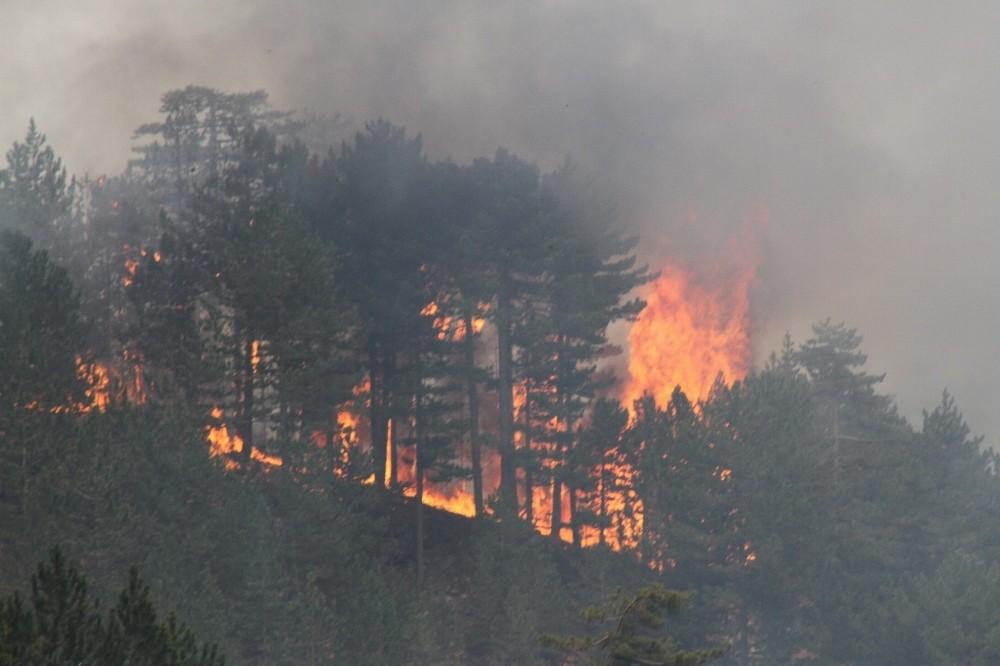 Konya'da çıkan orman yangını kontrol altına alınamıyor