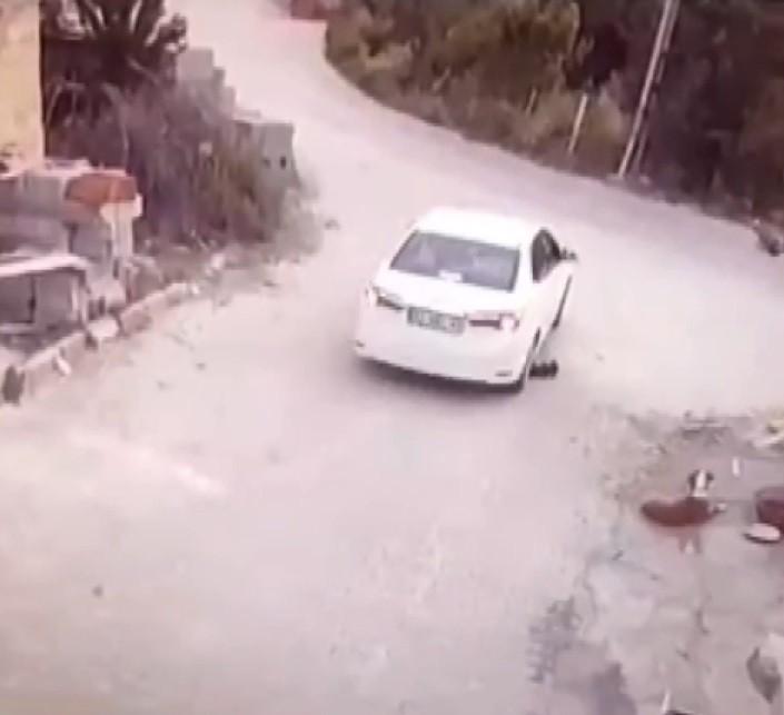 Sürücünün göz göre göre köpeğin üzerinden geçtiği anlar kamerada