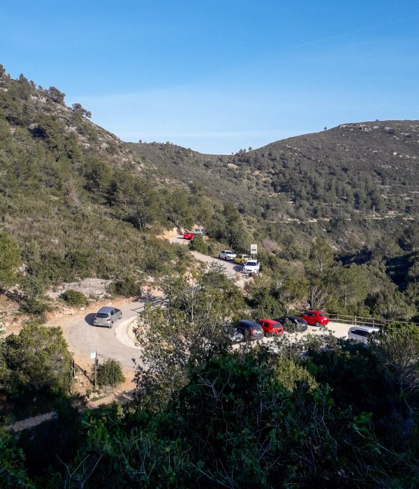 A little bit above the Cocó de Jordi parking between the rosemary and other bushes