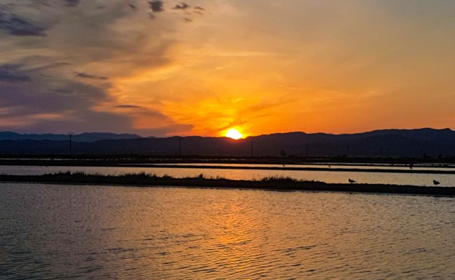 The sunset view in Delta Ebro natural park in Catalonia