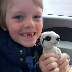 Tropical World: George and Minty the Meerkat ready for the drive home.
