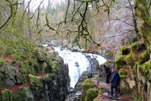Highland Fairytale: waterfall in the Hermitage
