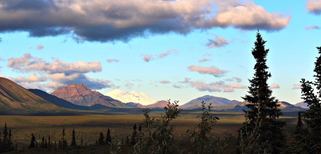Denali Park Road: early view of Denali (mountain)